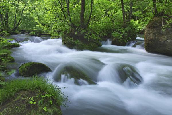 奥入瀬渓流・石ヶ戸の瀬