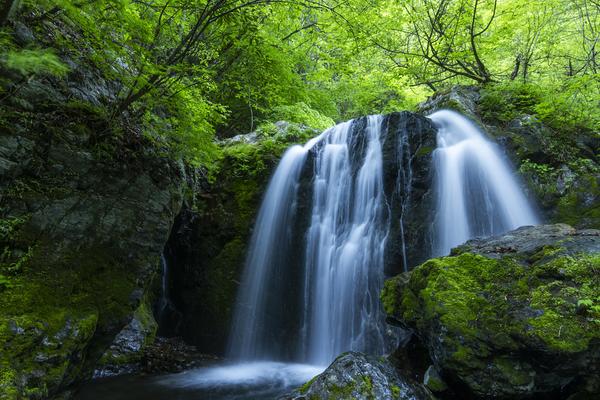 大血川、新緑の滝