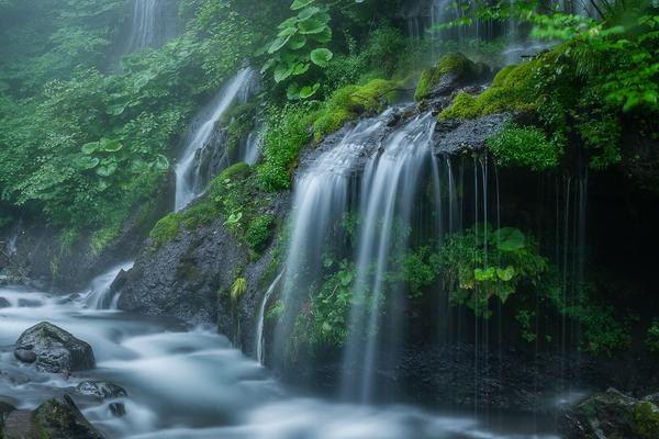 濡れる吐竜の滝