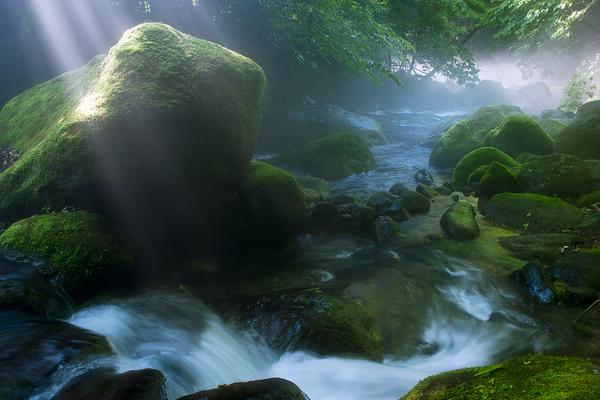 尚仁沢の川霧と光芒