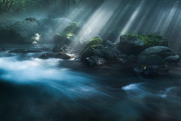 尚仁沢の光芒