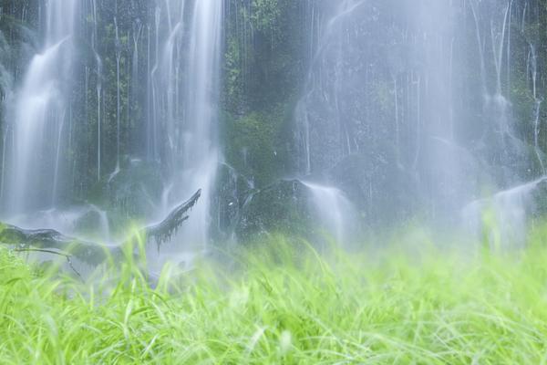 大滝の水に踊る緑