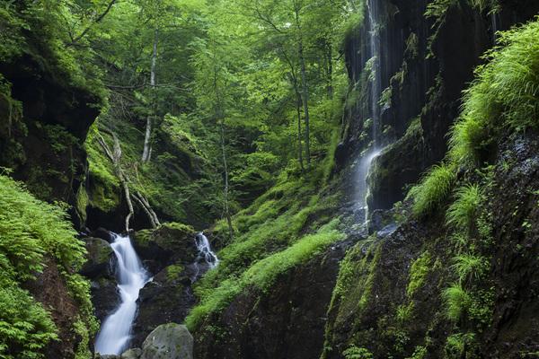 水と緑の渓谷、牛首の滝