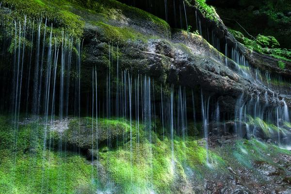 杣添渓谷の湧水