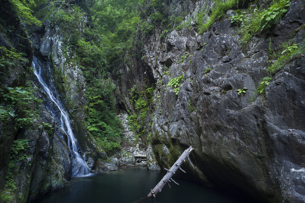 崖に挟まれる鼠餅大滝