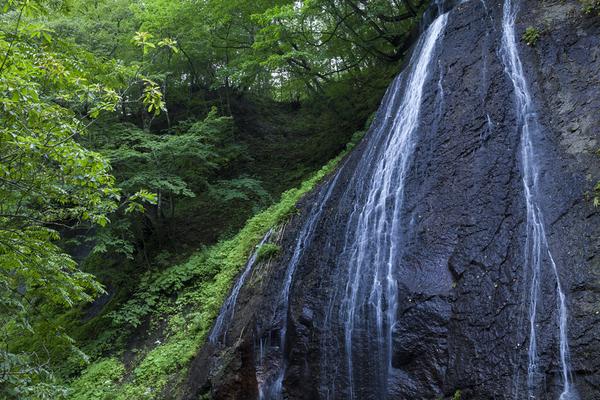 長笹沢川に落ちる断崖の滝